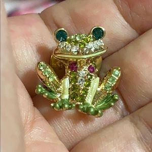 Colorful frog pin
